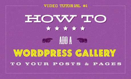 How To Add a WordPress Gallery to your Posts & Pages